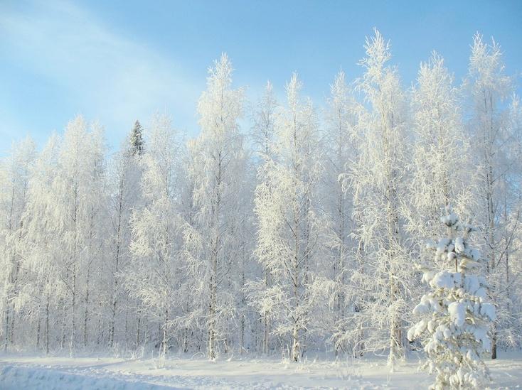 ВХМАО насмерть замерз 34-летний мужчина у клиники