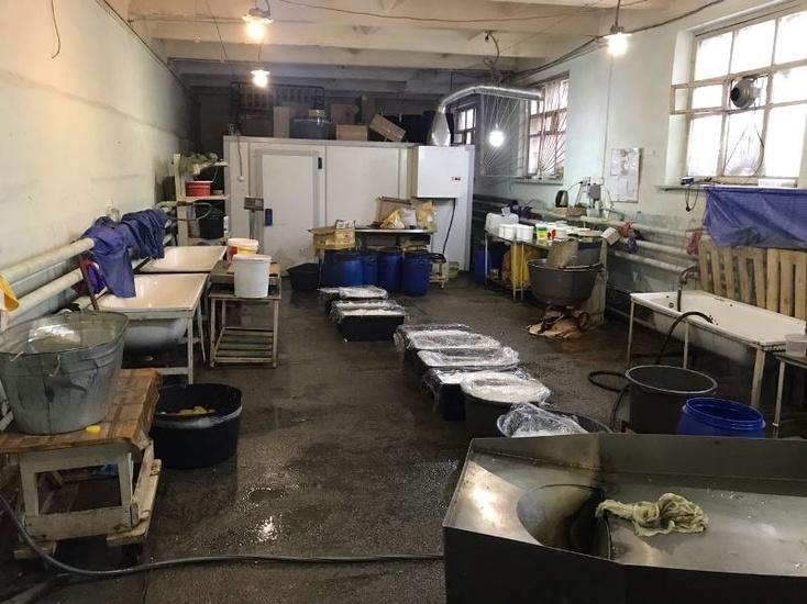 «Сделано вТюмени»: мигранты готовили салаты вгрязном гараже