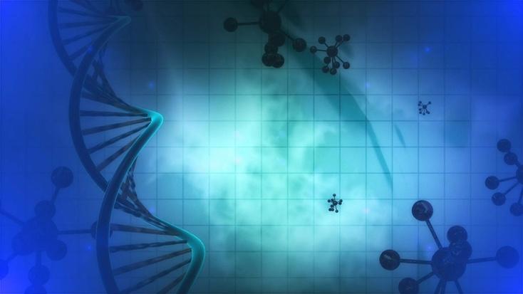 Ученые узнали, как эволюция борется свредными мутациями