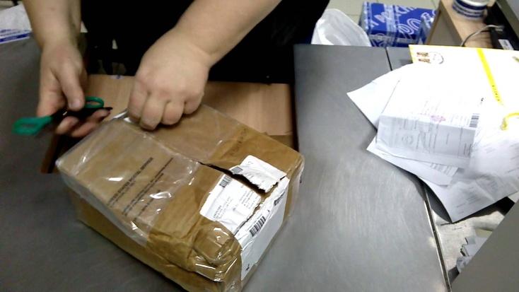 ВТюмени оперативники задержали подозреваемую вкраже изпосылки