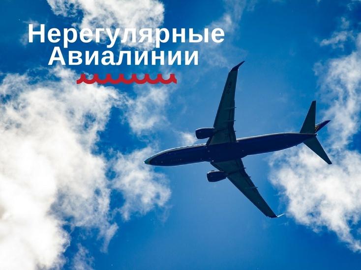 Прокуратура внесла представление министру транспорта из-за «ВИМ-Авиа»