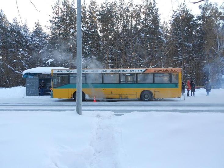 Автобус сбил пенсионерку— Сводка ДТП