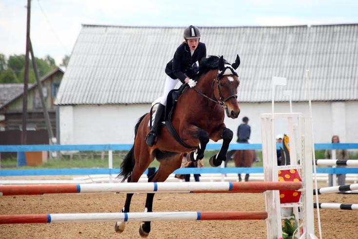 ялуторовск тюменская фото конный закупили материалы задумались