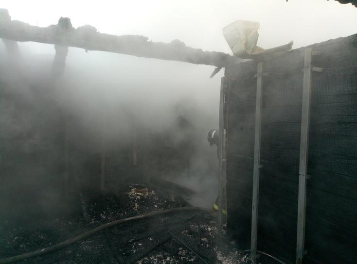 ВТюмени огонь уничтожил дачный дом сбаней